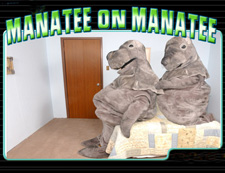 manatee_on_manatee_1313_fre